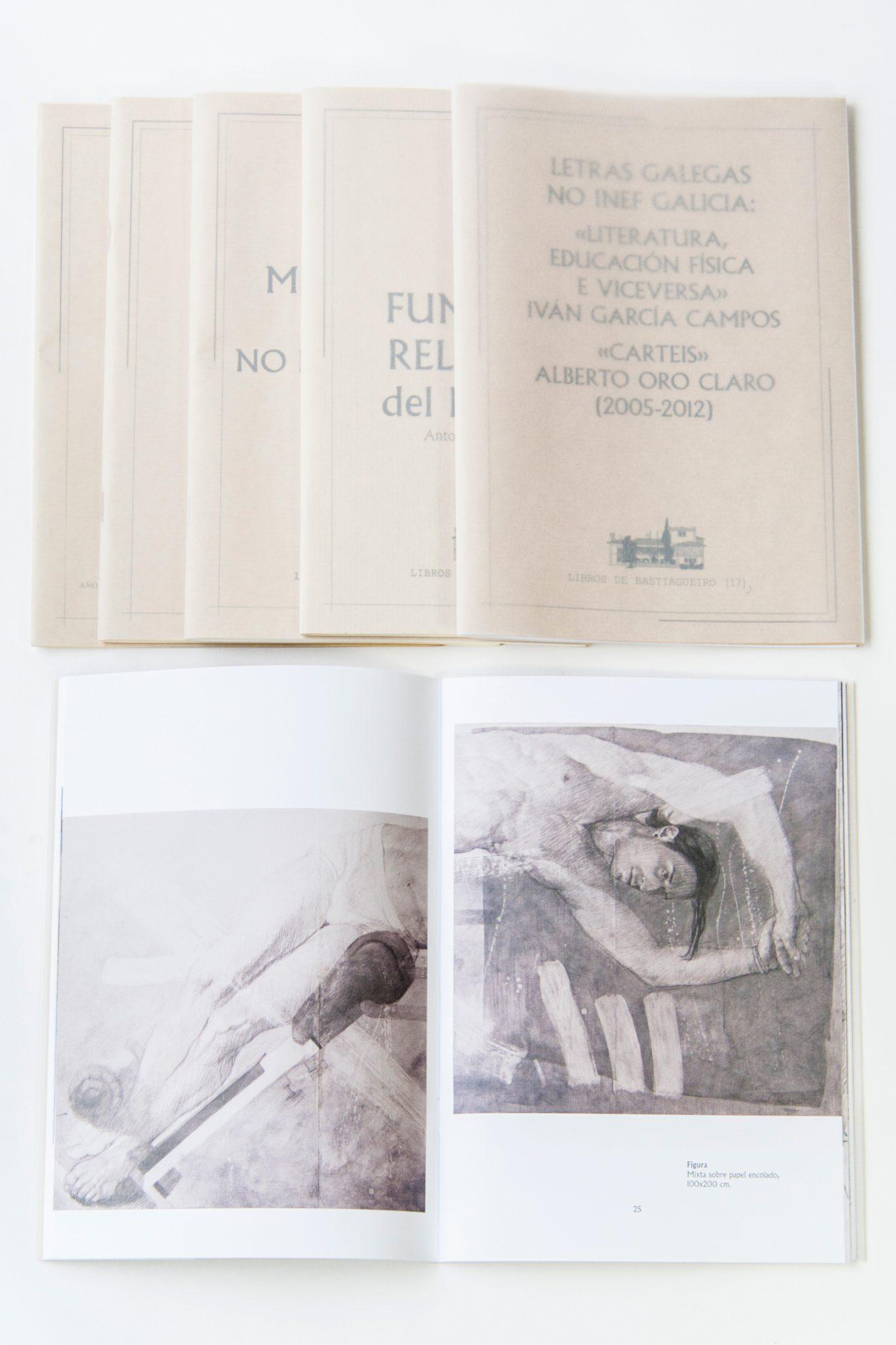 inef-coleccion-libros-bastiagueiro-maquetación-diseño-gráfico-publicidad-cartelería-identidad-corporativa-xaniño-coruña-revistas