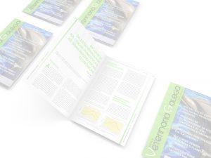 mockup-revista-veterinaria-galega-do-sur-maquetación-diseño-gráfico-gestión-de-contenidos-xaniño-web-coruña
