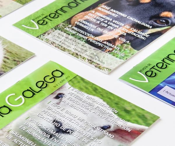 veterinarios-coleccion-revistas-maquetación-diseño-gráfico-publicidad-cartelería-identidad-corporativa-xaniño-coruña